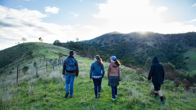 an adult and three children going bushwalking